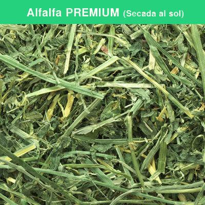 Alfalfa PREMIUM (Secada al sol)