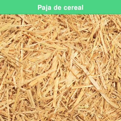 Paja de cereal