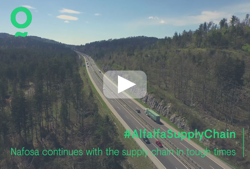 Nafosa continues with the supply chain in tough times