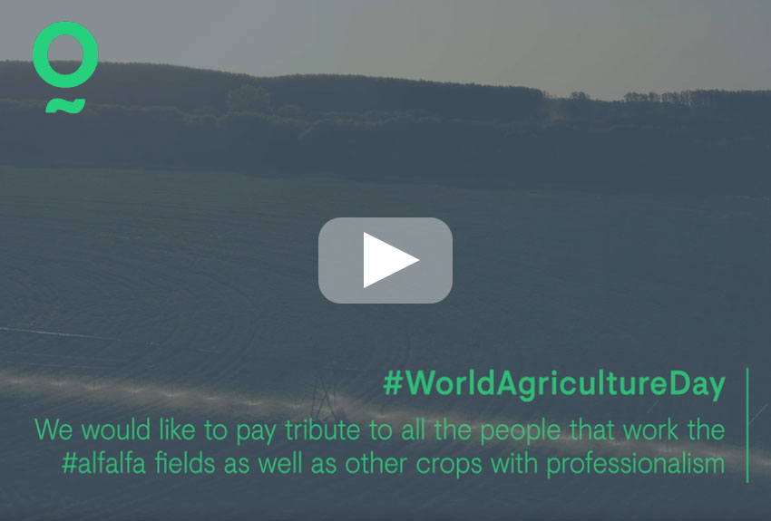 We are celebrating World Agriculture Day