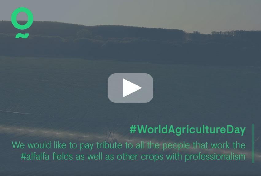 Celebramos el Día Mundial de la Agricultura