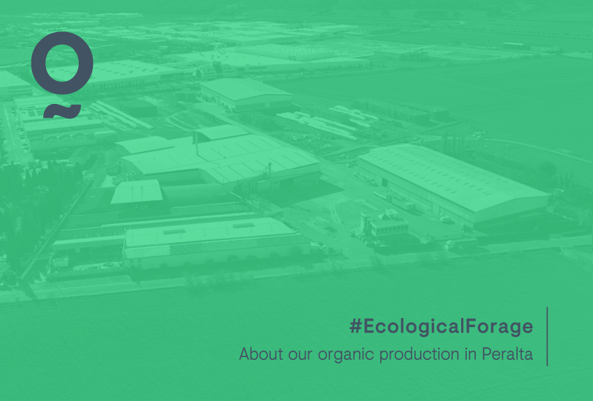 About our organic production in Peralta