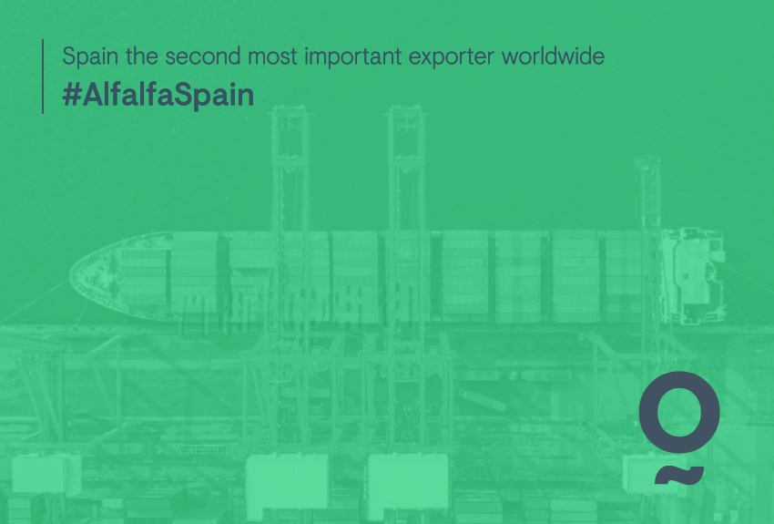 Over 400,000MT exported each year.