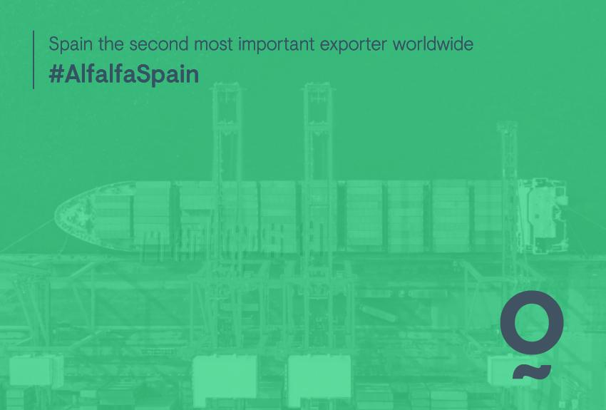 Más de 400.000Tm exportadas al año.