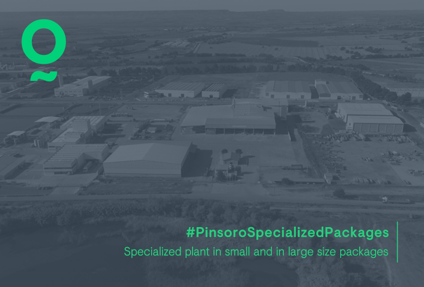 About the production of Pinsoro