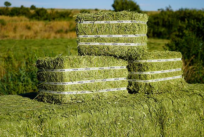 001-gran-variedad-de-formatos-paquetes-alfalfa-y-forrajes