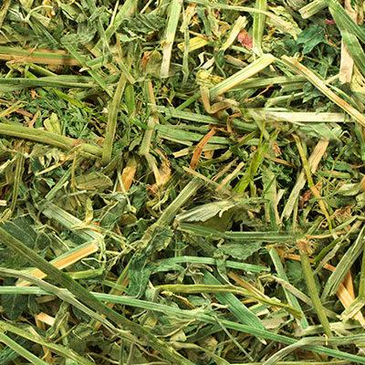 Paquete de Alfalfa deshidratada