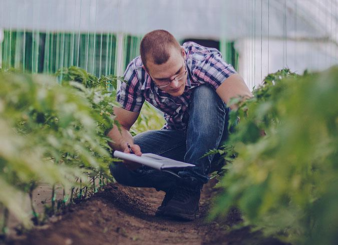 002-agricultura-ultima-tecnologia-4_alfalfa-y-otros-cultivos-aragon-espana