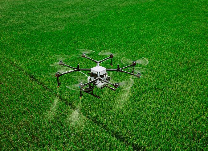 002-agricultura-ultima-tecnologia-alfalfa-y-otros-cultivos-aragon-espana